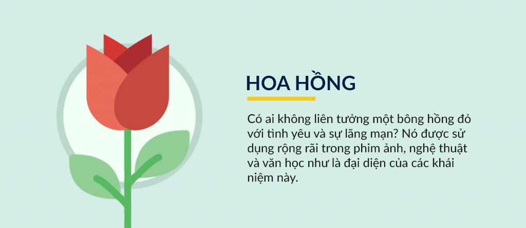 hoa-hong.