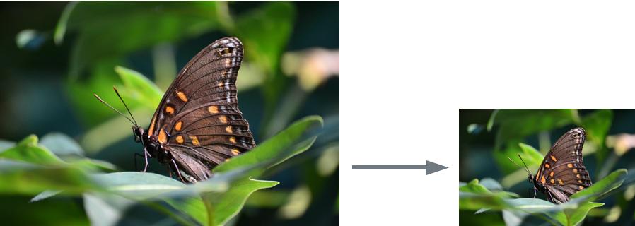 basic_resolution_small_arrow.