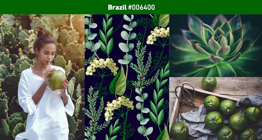 brazil-lightbox.
