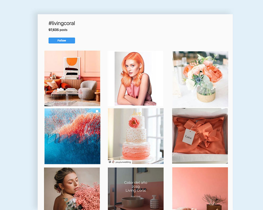 visual-design-trends-Pantone-Coral-3.