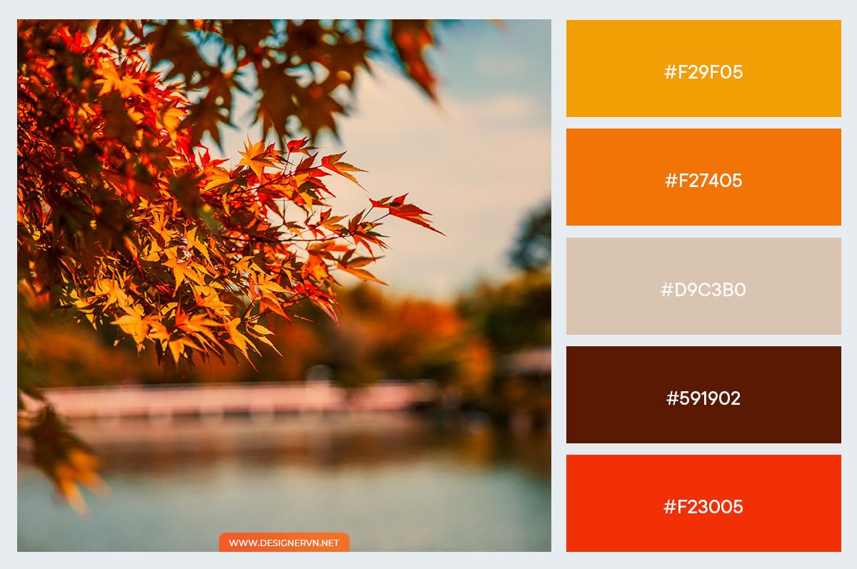 Palette-autumn-7.