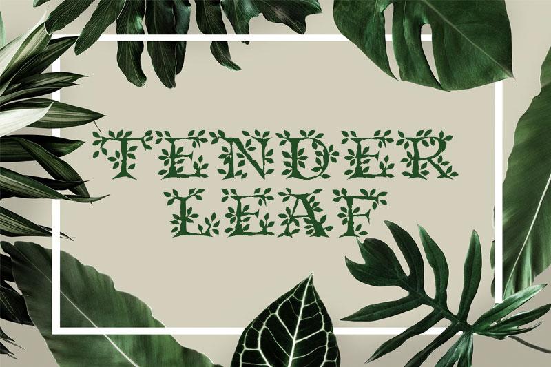 tenderleaf-leaf-font.