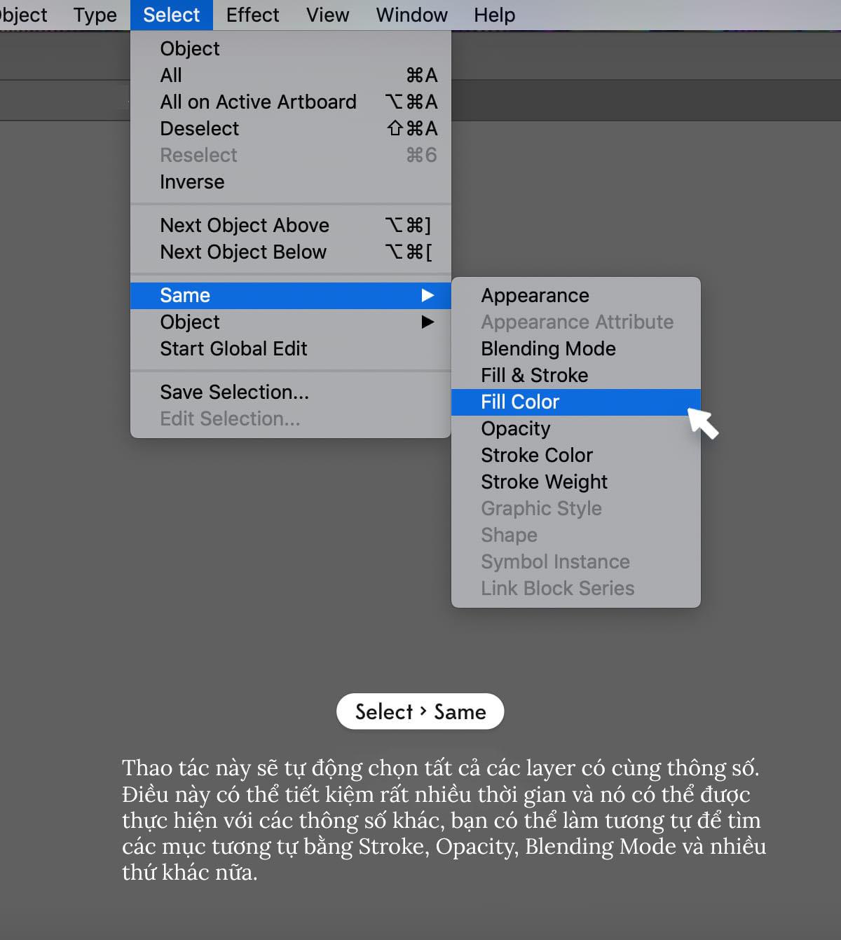 Time-Saving-Illustrator-Tips-Select-Same.