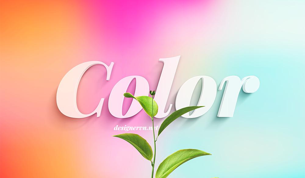 dsvn-color-2021.