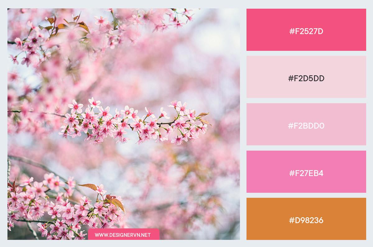 Palette-4.